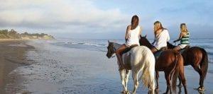 Horse Riding Tours in Corfu
